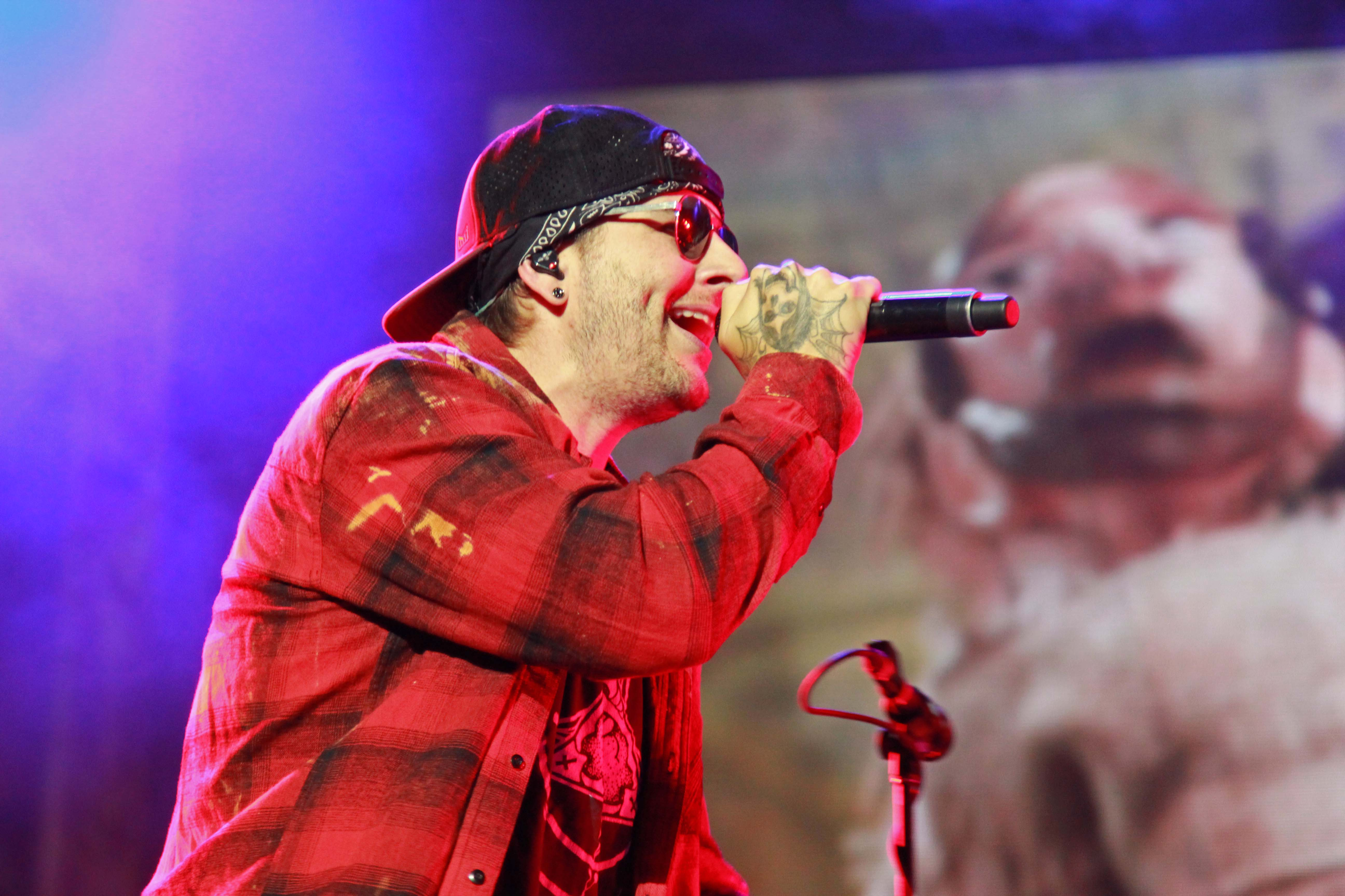 Avenged Sevenfold, Rock im Park 2018